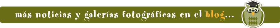 cabecera blog